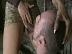 TS Seduction: The First Ever TS Gang Stuff On TS Seduction – The Gangster Group sex
